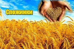 Славянский праздник Спожинки